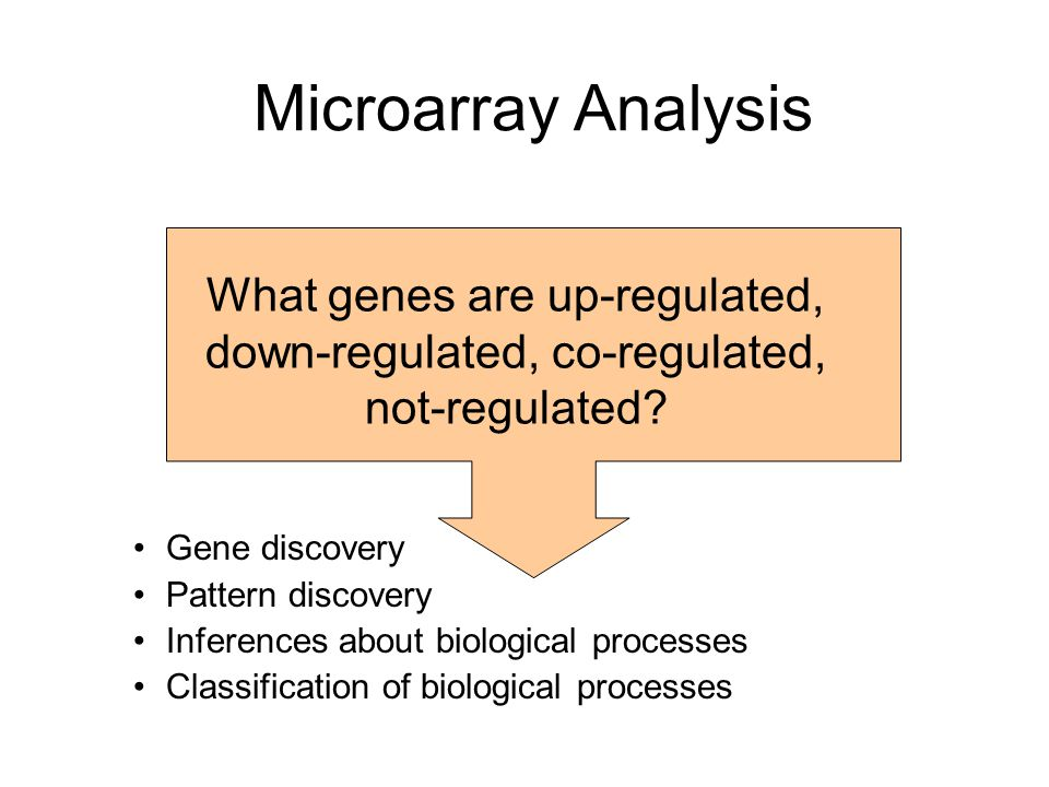 Microarray Analysis Gene discovery Pattern discovery Inferences about biological processes Classification of biological processes What genes are up-re