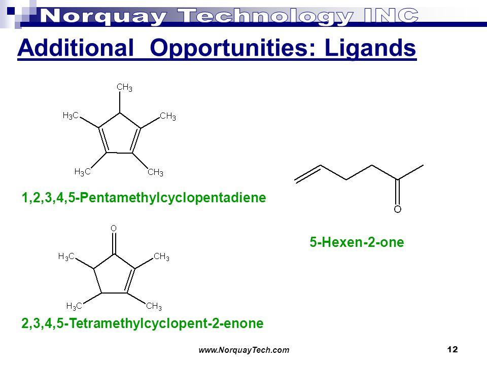 www.NorquayTech.com12 Additional Opportunities: Ligands 1,2,3,4,5-Pentamethylcyclopentadiene 2,3,4,5-Tetramethylcyclopent-2-enone 5-Hexen-2-one
