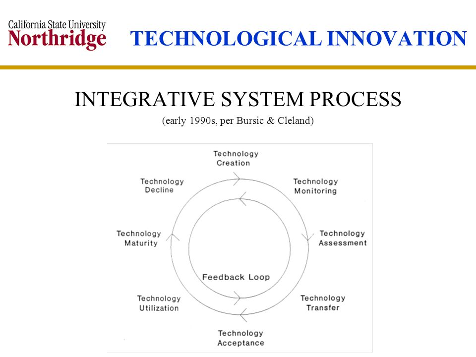 TECHNOLOGICAL INNOVATION INTEGRATIVE SYSTEM PROCESS (early 1990s, per Bursic & Cleland)