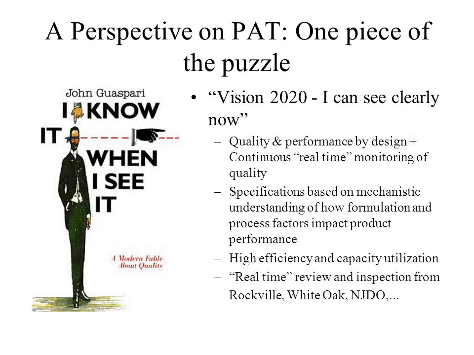 A Perspective on PAT: One piece of the puzzle Vision 2020 - I can see clearly now –Quality & performance by design + Continuous real time monitoring o