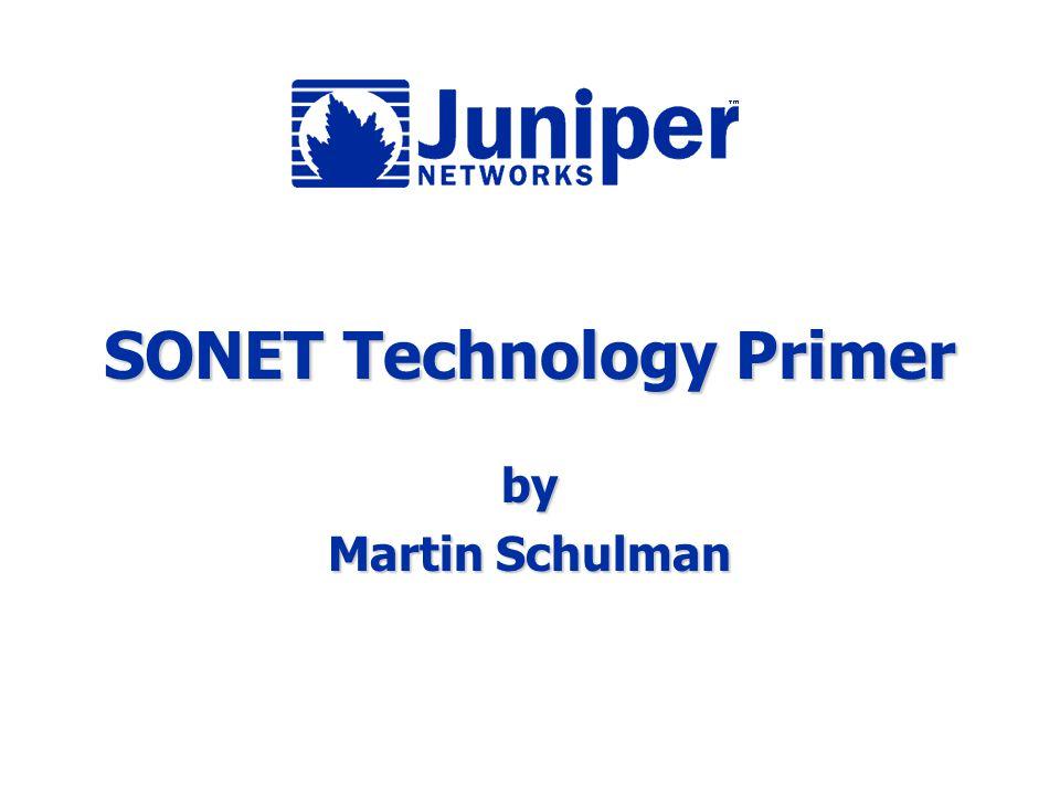 SONET Technology Primer by Martin Schulman