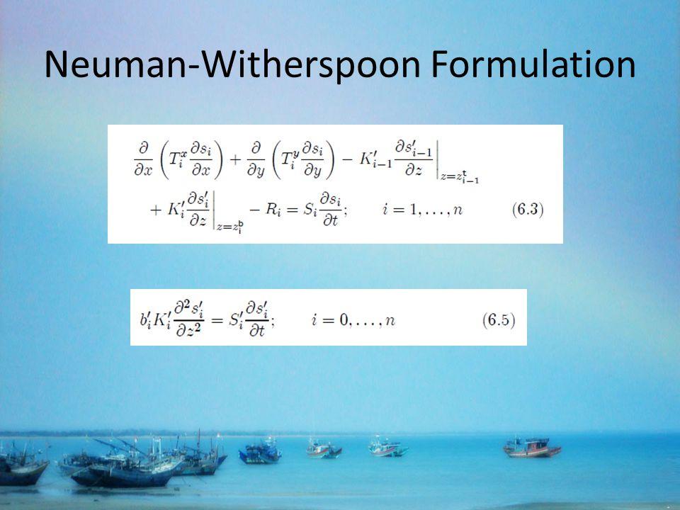 Neuman-Witherspoon Formulation