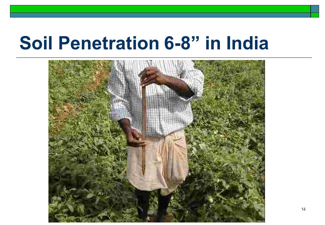 14 Soil Penetration 6-8 in India