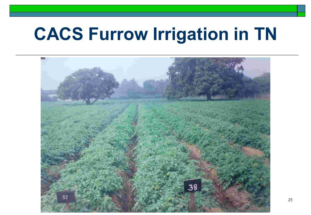 25 CACS Furrow Irrigation in TN