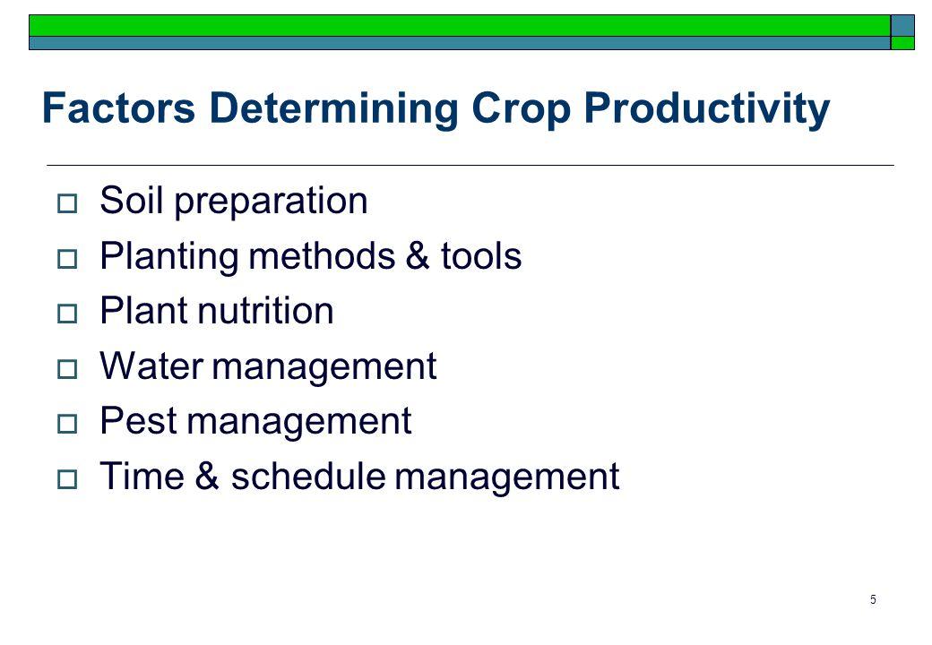 5 Factors Determining Crop Productivity Soil preparation Planting methods & tools Plant nutrition Water management Pest management Time & schedule management