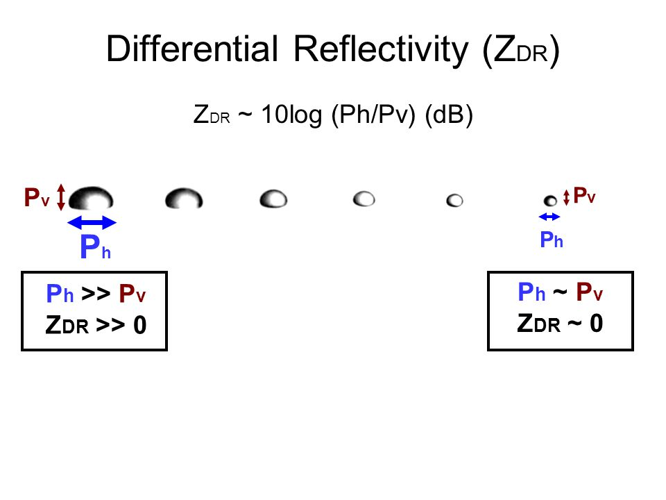 Differential Reflectivity (Z DR ) PhPh PvPv PvPv P h ~ P v Z DR ~ 0 P h >> P v Z DR >> 0 Z DR ~ 10log (Ph/Pv) (dB) PhPh