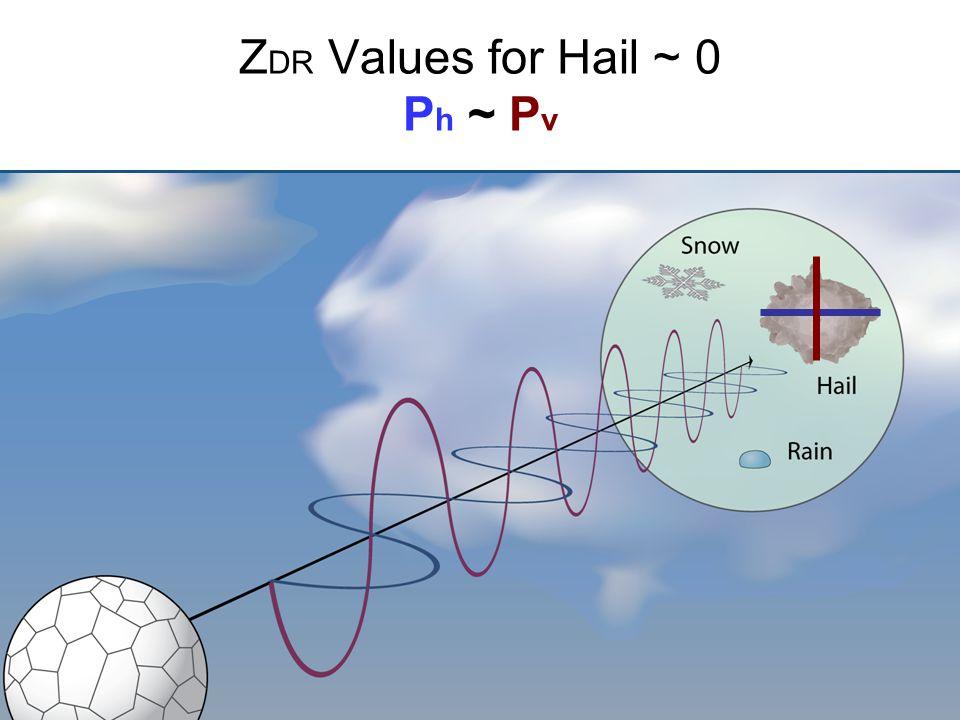 Z DR Values for Hail ~ 0 P h ~ P v