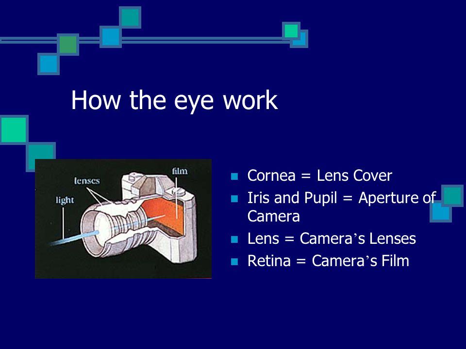 How the eye work Cornea = Lens Cover Iris and Pupil = Aperture of Camera Lens = Camera s Lenses Retina = Camera s Film