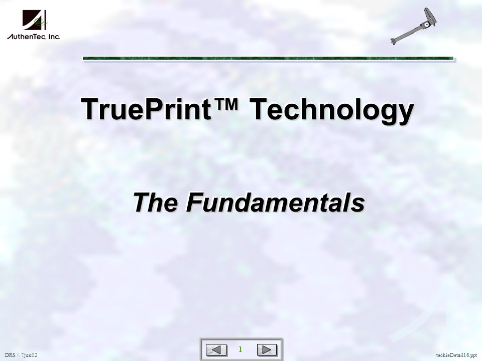 DRS \\ 7jun02 1 techieDetail16.ppt TruePrint Technology The Fundamentals