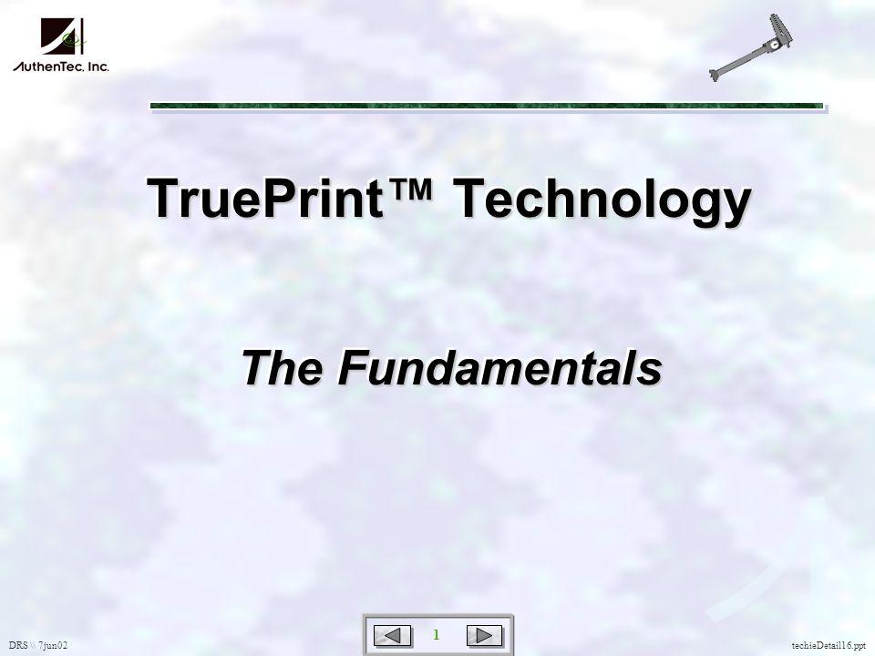 DRS \\ 7jun02 1 techieDetail16.ppt TruePrint Technology The Fundamentals