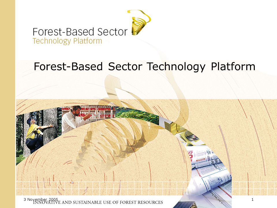3 November 2005 12 The European Forest-Based Sector Vision for 2030 The European forest-based sector plays a key role in a sustainable society.