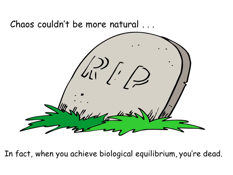 Chaos couldnt be more natural... In fact, when you achieve biological equilibrium, youre dead.