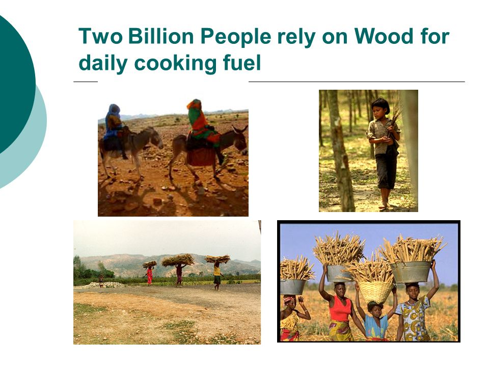 Two Billion People rely on Wood for daily cooking fuel