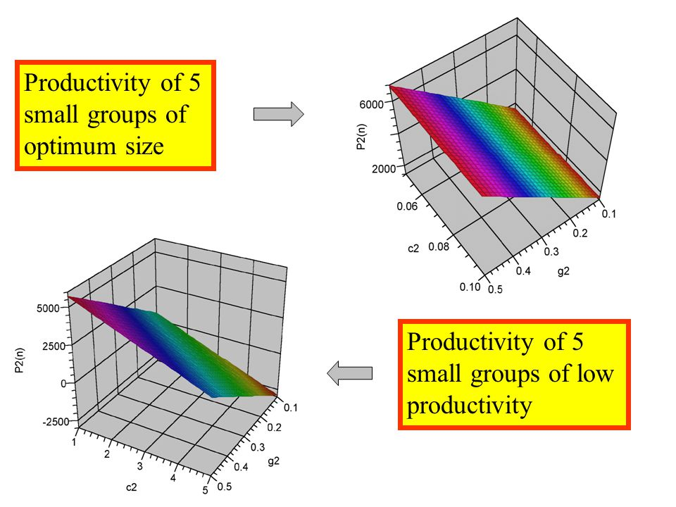 Productivity of 5 small groups of optimum size Productivity of 5 small groups of low productivity