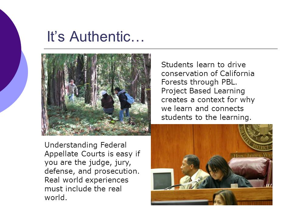 Its Authentic… Students learn to drive conservation of California Forests through PBL.