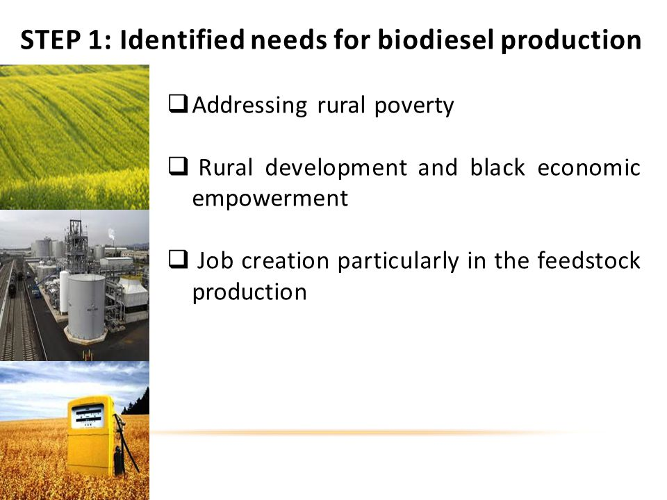 STEP 1: Identified needs for biodiesel production Addressing rural poverty Rural development and black economic empowerment Job creation particularly in the feedstock production