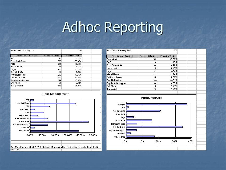 Adhoc Reporting