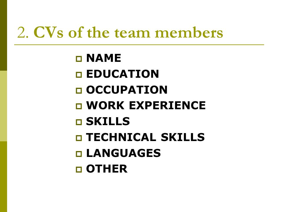 2. CVs of the team members NAME EDUCATION OCCUPATION WORK EXPERIENCE SKILLS TECHNICAL SKILLS LANGUAGES OTHER