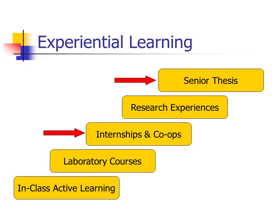 Experiential Learning In-Class Active Learning Laboratory Courses Research Experiences Senior Thesis Internships & Co-ops