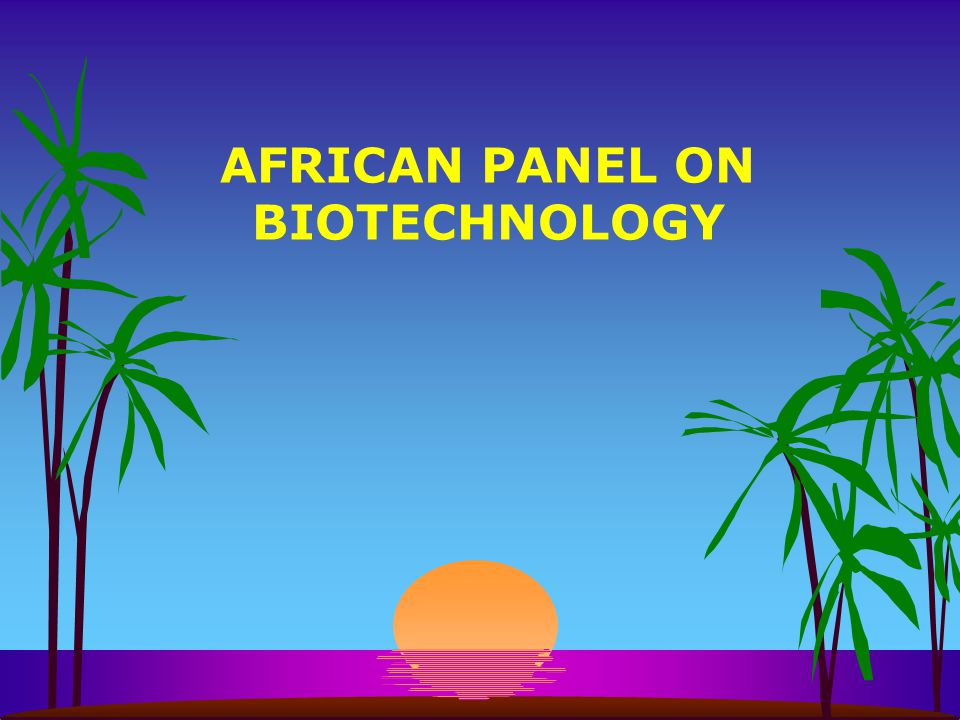 AFRICAN PANEL ON BIOTECHNOLOGY