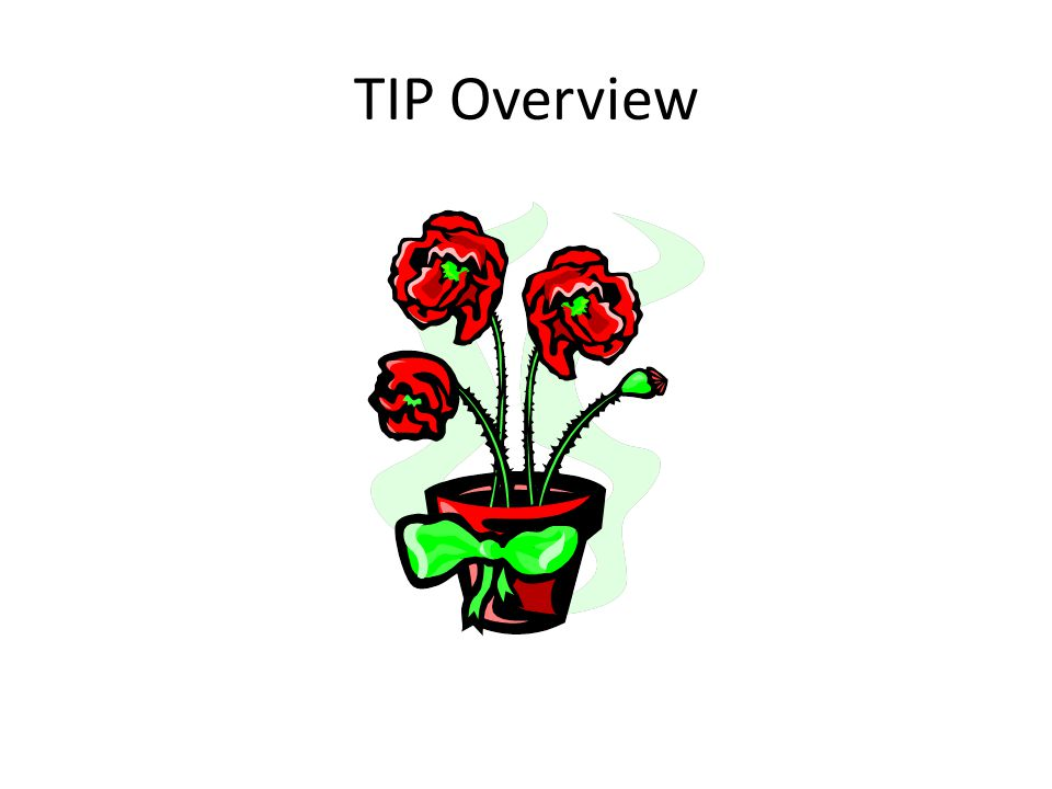 TIP Overview