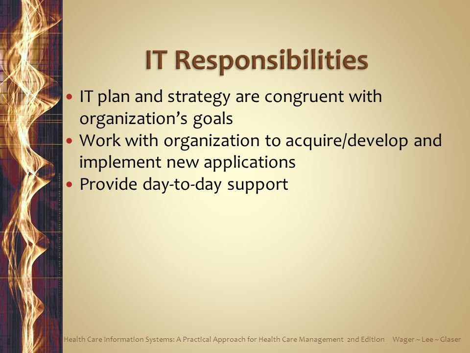IT plan and strategy are congruent with organizations goals Work with organization to acquire/develop and implement new applications Provide day-to-da