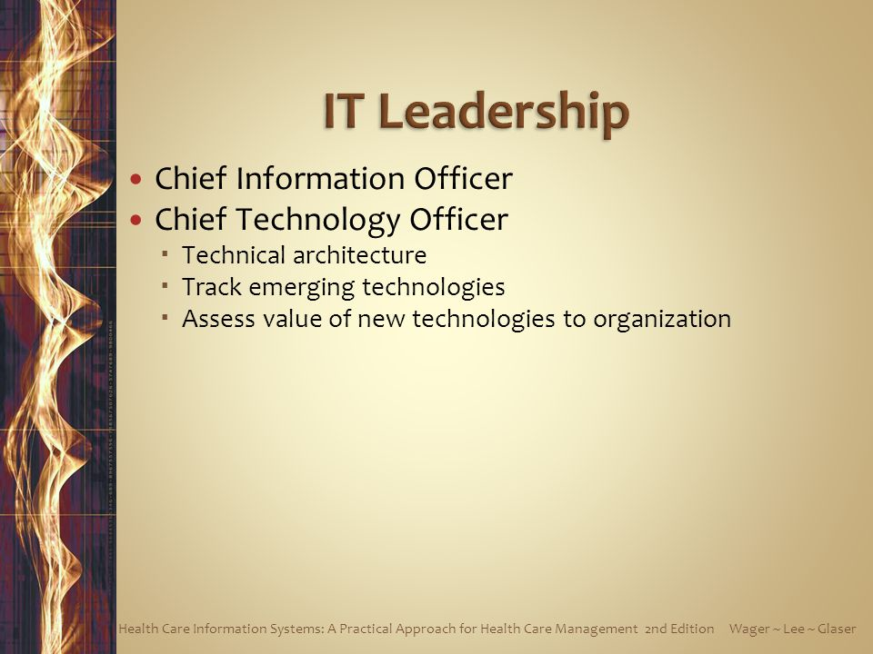 Chief Information Officer Chief Technology Officer Technical architecture Track emerging technologies Assess value of new technologies to organization