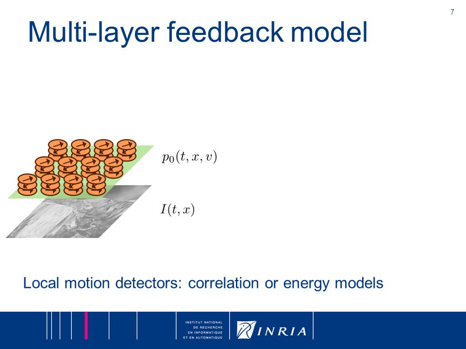 7 Multi-layer feedback model Local motion detectors: correlation or energy models