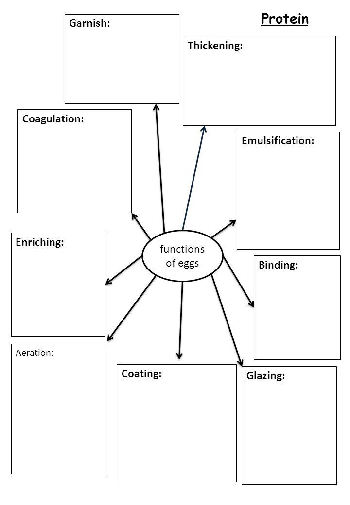 Protein functions of eggs Emulsification: Aeration: Binding: Thickening: Coagulation: Coating: Glazing: Garnish: Enriching: