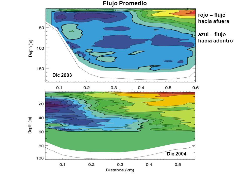 Depth (m) rojo – flujo hacia afuera azul – flujo hacia adentro Dic 2003 Dic 2004 Flujo Promedio