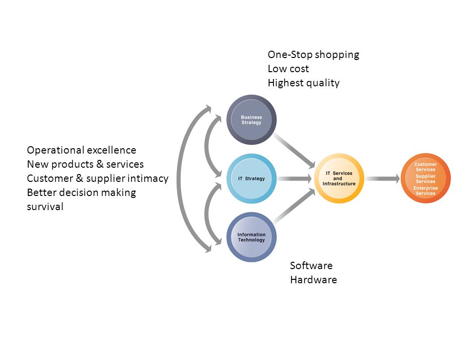One-Stop shopping Low cost Highest quality Operational excellence New products & services Customer & supplier intimacy Better decision making survival Software Hardware