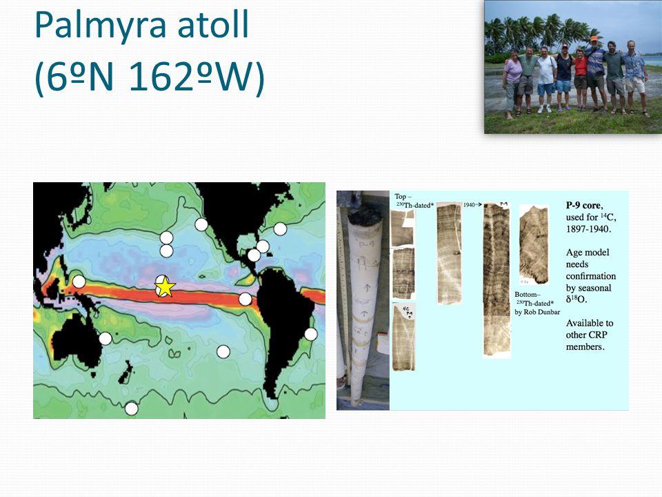 Palmyra P10 TOPBOTTOM
