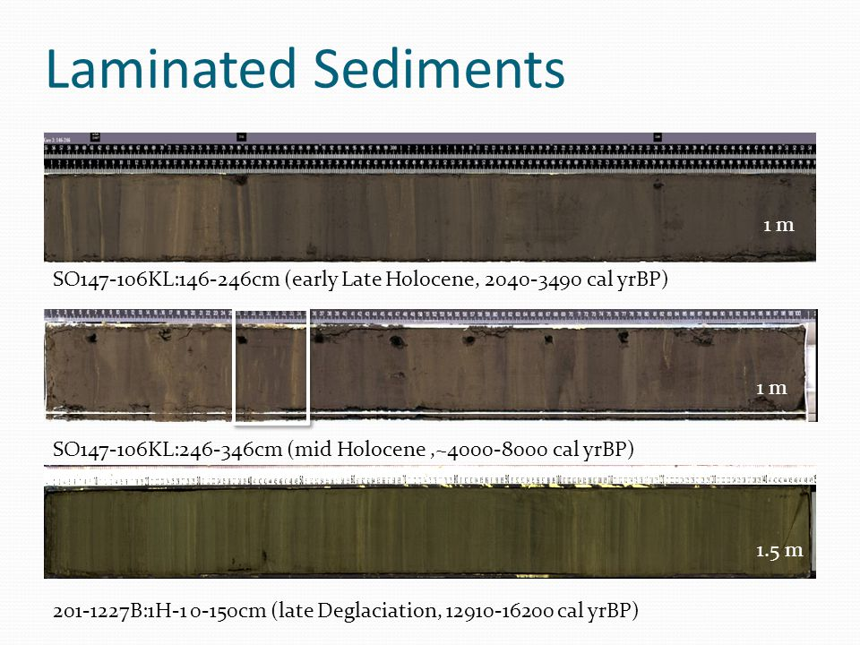 Laminated Sediments SO147-106KL:146-246cm (early Late Holocene, 2040-3490 cal yrBP) SO147-106KL:246-346cm (mid Holocene,~4000-8000 cal yrBP) 201-1227B:1H-1 0-150cm (late Deglaciation, 12910-16200 cal yrBP) 1 m 1.5 m