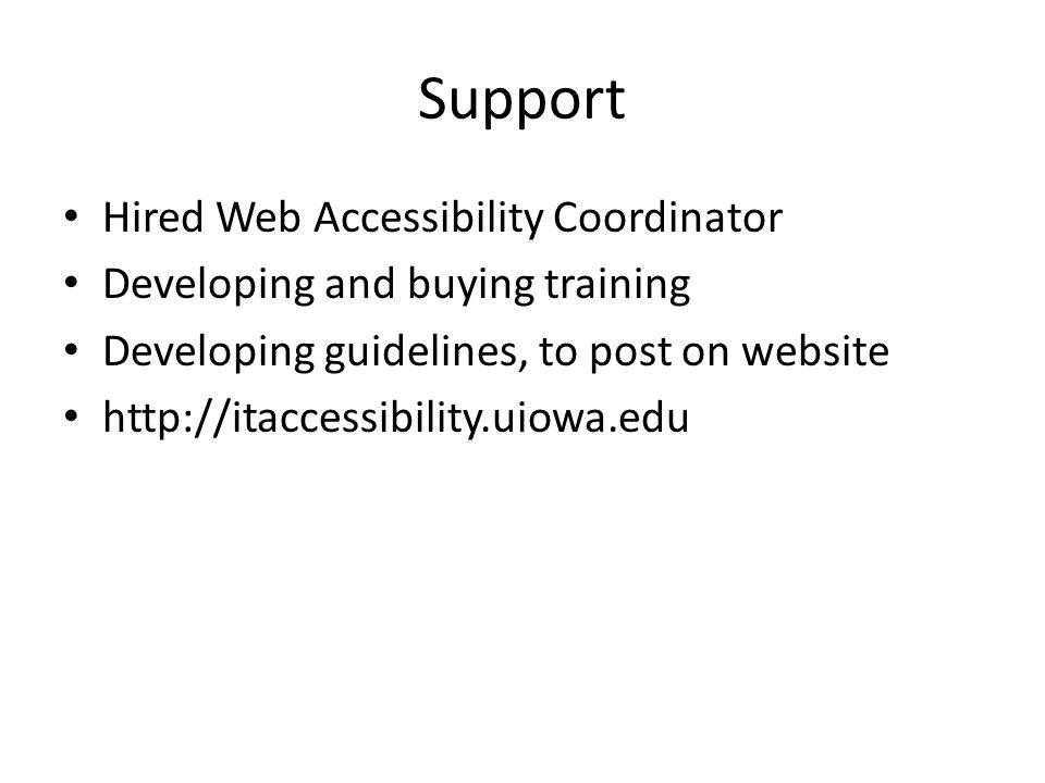 Support Hired Web Accessibility Coordinator Developing and buying training Developing guidelines, to post on website http://itaccessibility.uiowa.edu