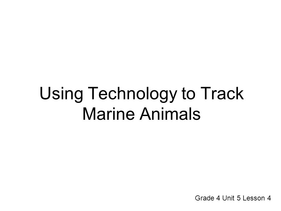 Using Technology to Track Marine Animals Grade 4 Unit 5 Lesson 4