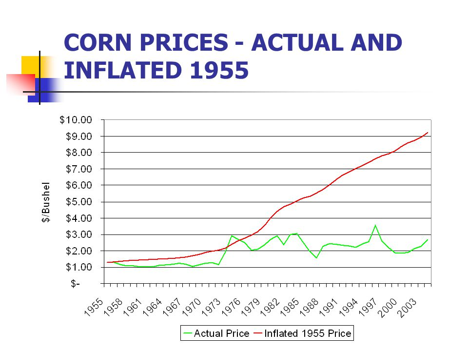 CORN PRICES - ACTUAL AND INFLATED 1955