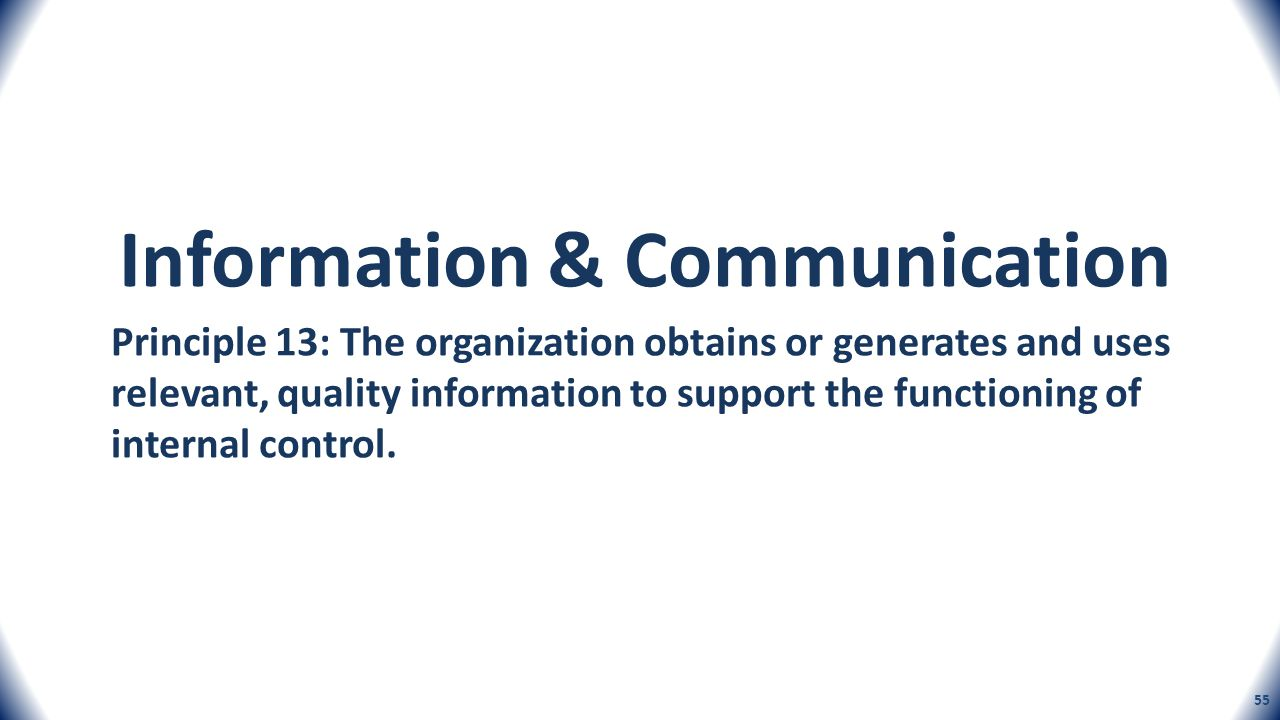 Principle 13: The organization obtains or generates and uses relevant, quality information to support the functioning of internal control. Information
