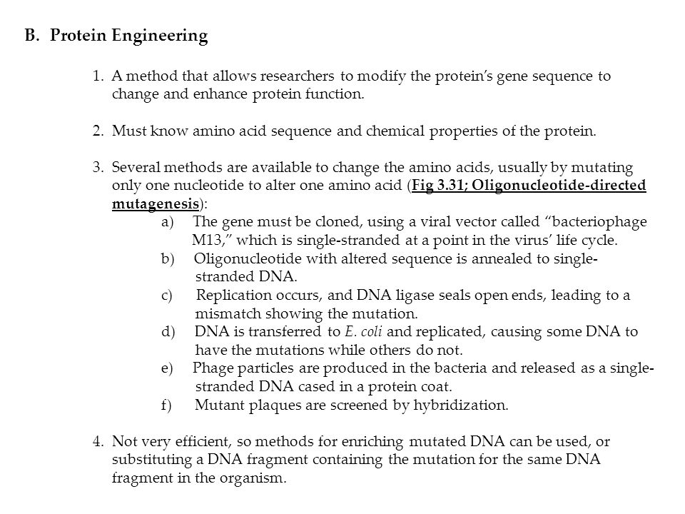 B.Protein Engineering 1.