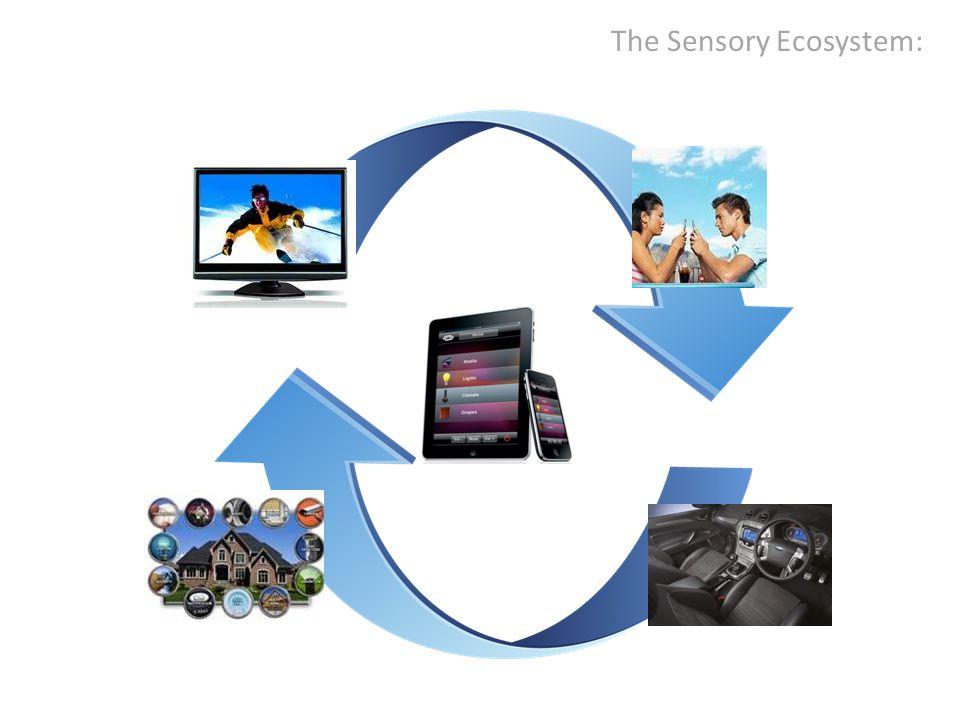 The Sensory Ecosystem: