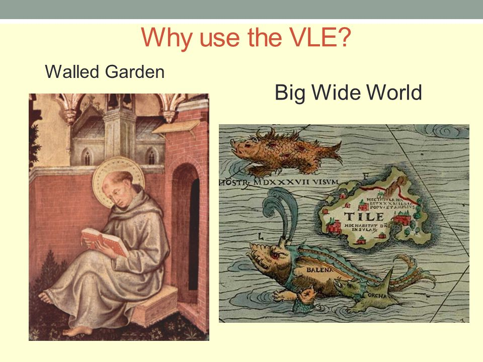Why use the VLE? Big Wide World Walled Garden