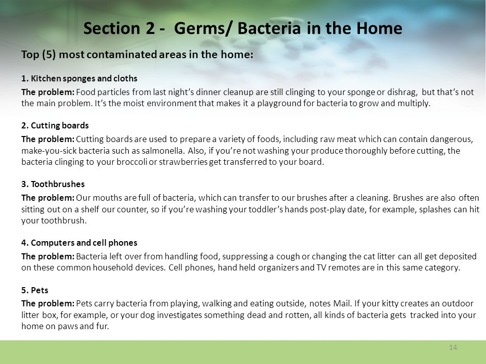 Section 2 - Germs/ Bacteria in the Home Top (5) most contaminated areas in the home: 1. Kitchen sponges and cloths The problem: Food particles from la