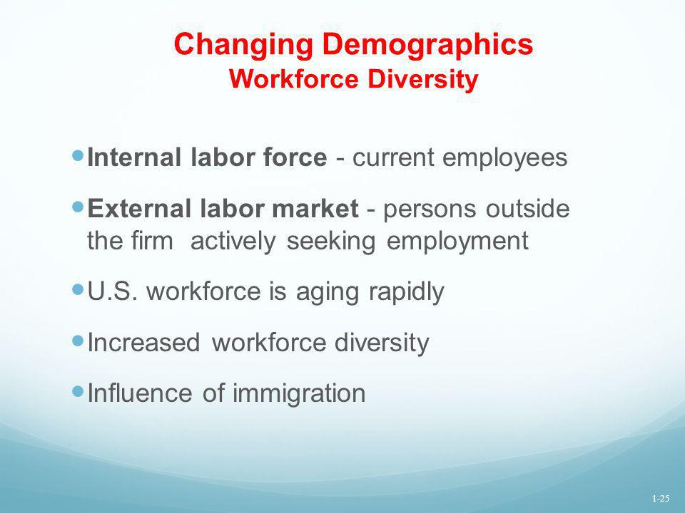 Changing Demographics Workforce Diversity Internal labor force - current employees External labor market - persons outside the firm actively seeking e