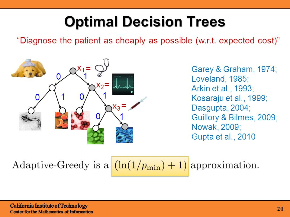 20 Optimal Decision Trees x1x1 x2x2 x3x3 1 1 0 0 0 = = = Garey & Graham, 1974; Loveland, 1985; Arkin et al., 1993; Kosaraju et al., 1999; Dasgupta, 2004; Guillory & Bilmes, 2009; Nowak, 2009; Gupta et al., 2010 Diagnose the patient as cheaply as possible (w.r.t.