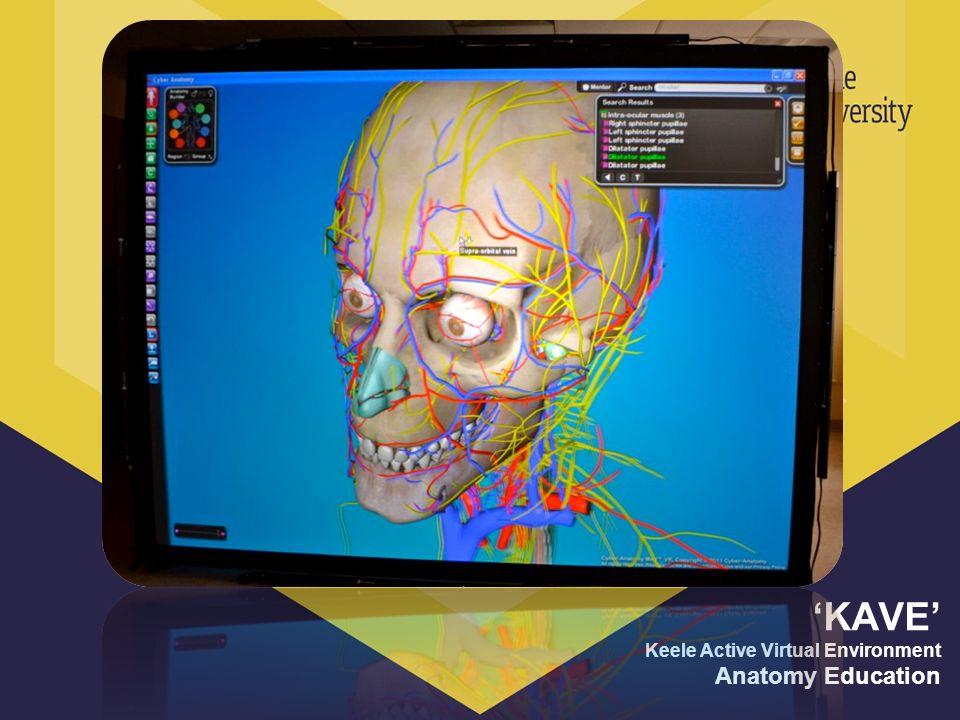 KAVE Keele Active Virtual Environment Anatomy Education