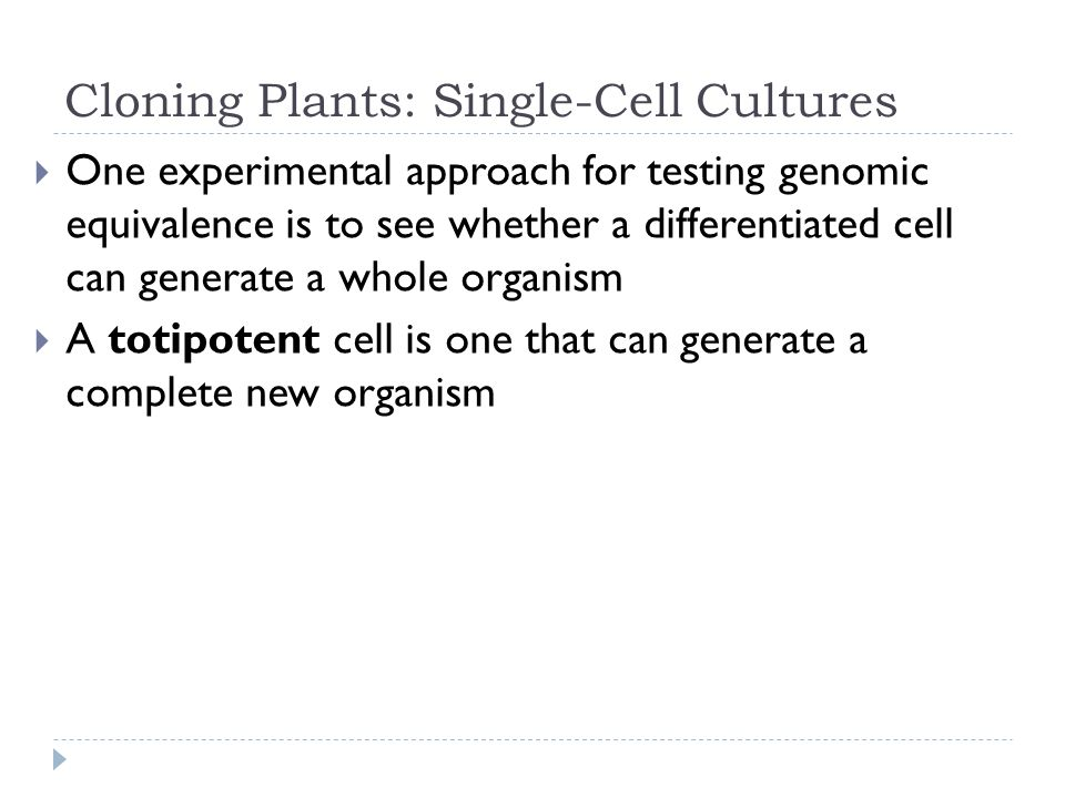 Cloning Plants: Single-Cell Cultures One experimental approach for testing genomic equivalence is to see whether a differentiated cell can generate a