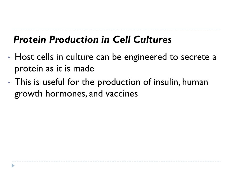Host cells in culture can be engineered to secrete a protein as it is made This is useful for the production of insulin, human growth hormones, and va