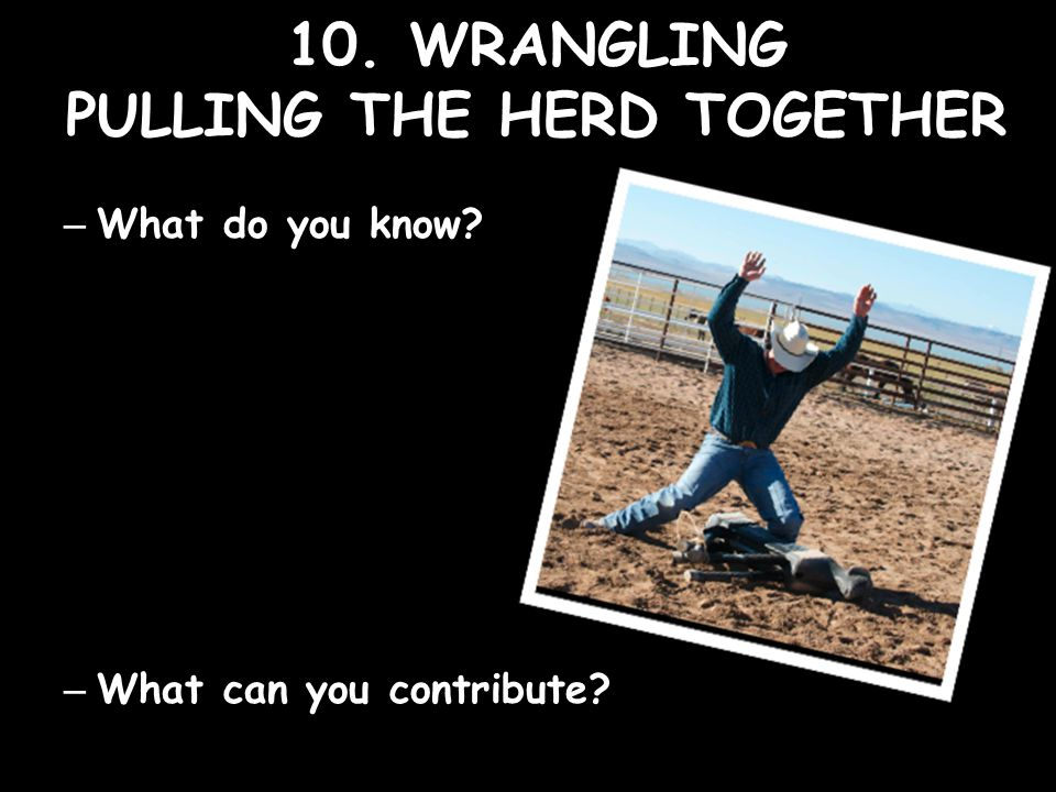 10. WRANGLING PULLING THE HERD TOGETHER – What do you know – What can you contribute