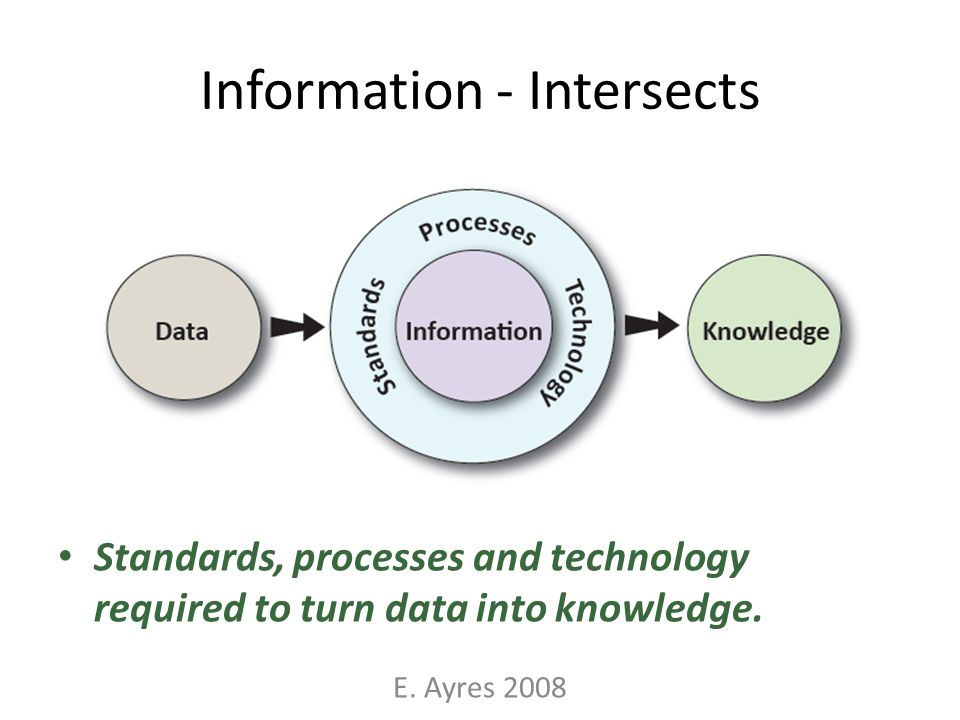 Information - Intersects Standards, processes and technology required to turn data into knowledge. E. Ayres 2008