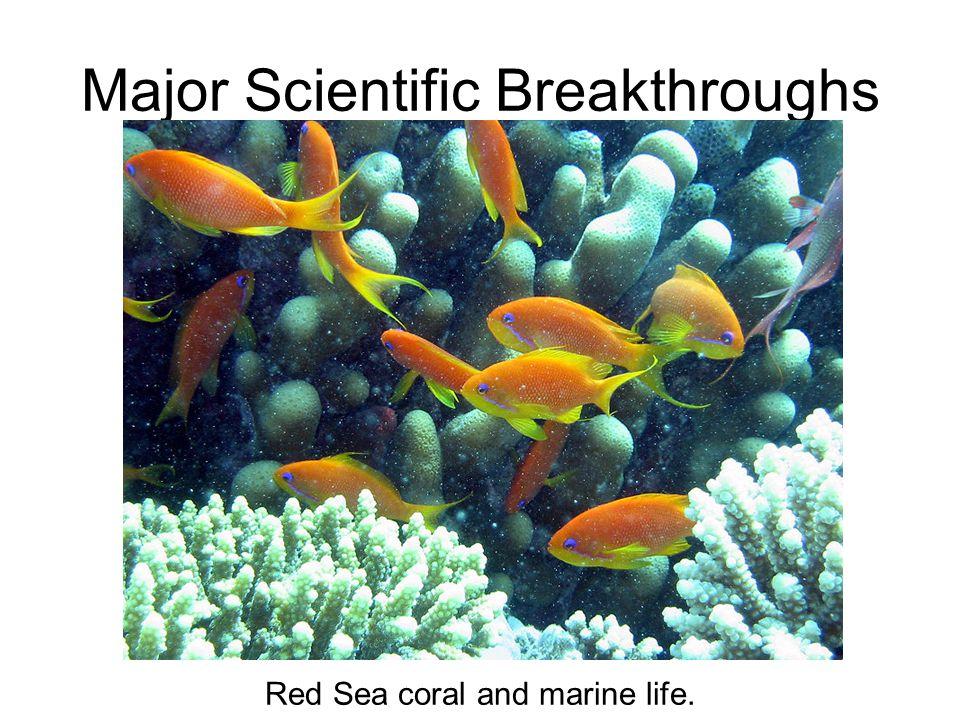 Major Scientific Breakthroughs Red Sea coral and marine life.