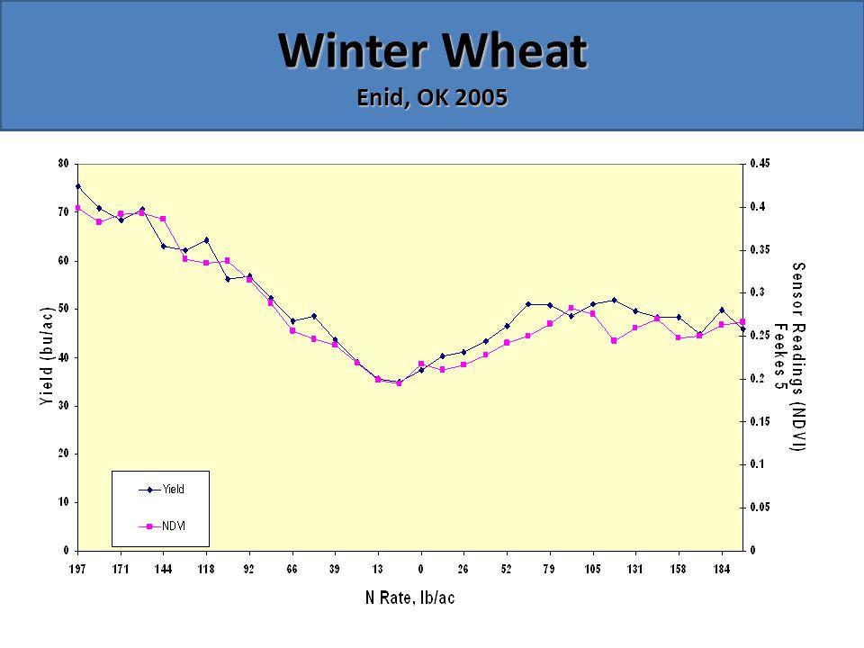 Winter Wheat Enid, OK 2005